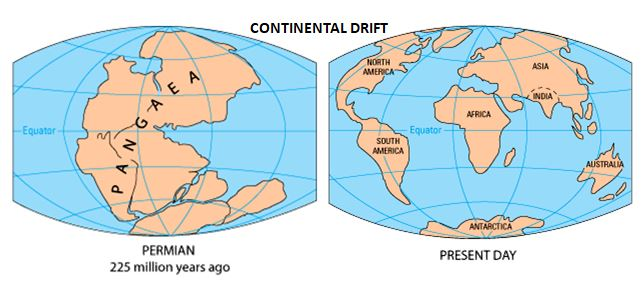 Continental drift